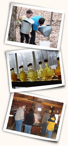 Geauga Maple Syrup Events, Pancake Breakfasts. TourGeauga.com