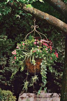 Hang your baskets in unexpected places. A hook installed in a tree branch holds this basket featuring a sensational combination for the shade.