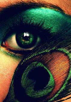 Peacock (peacock,eye)