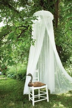 Sheer Canopy #HomefortheHolidays