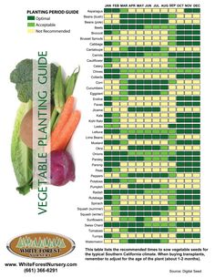 When to plant veggies #Food #Recipe #Yummy #Meals #Dinner #Chef #Cook #Bake #Culinary