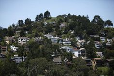 Hey, Steph  --  Mill Valley has been rated one of the top 20 best small towns in America by Smithsonian magazine. View of homes nestled in the hills of Mill Valley, California , on Friday, April 27th, 2012. Photo: Jill Schneider, The Chronicle / SF