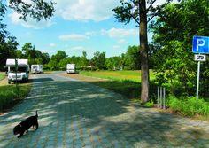 Stellplatz am Spreewald-Camping Sidewalk, Camping, Environment, Vacations, Viajes, Garten, Campsite, Side Walkway, Sidewalks