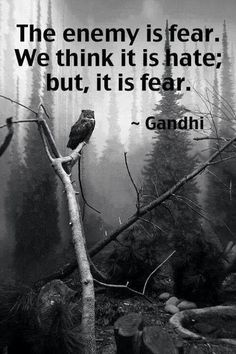 hate comes from fear...