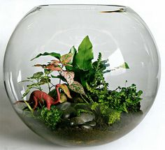 Image detail for -... from small town ) and a terrarium (with dinosaur!) from miniscapes