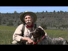 Dog Training & Bird Hunting Tip: Work Like a Dog, Honestly - WingshootingUSA.org - http://www.7tv.net/dog-training-bird-hunting-tip-work-like-a-dog-honestly-wingshootingusa-org/
