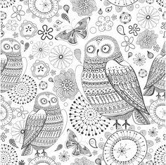 Owl garden 2