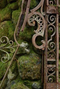 Lost | Forgotten | Abandoned | Displaced | Decayed | Neglected | Discarded | Disrepair |  Moss and Gate (by S Migol)