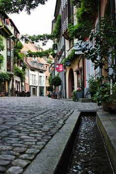 My Hometown, Freiburg, Germany