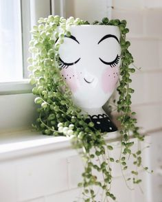 Trendy indoor succulent planter string of pearls 57 Ideas Garden Crafts, Garden Projects, Garden Art, Garden Ideas, Cool Plants, Cactus Plants, Cacti, Succulents Garden, Planting Flowers