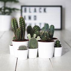 KELE voy a hacer Decoración de Interiores | Blog