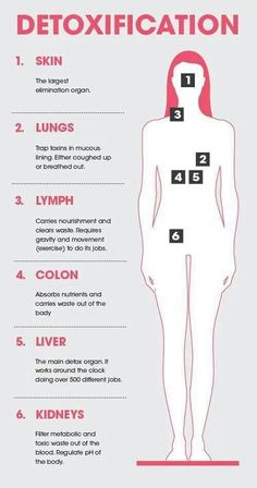 DETOX - 6 Main Detox Organs (Skin, Lungs, Lymph, Colon, Liver, & Kidneys) & Their Functions.