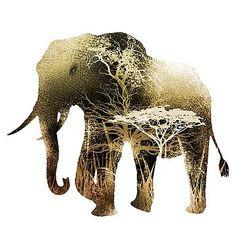 Nostalgic Art - Colorful Elephant Fine Art Prints, Canvas Prints, Framed Prints, Nostalgic Art, Colorful Elephant, Unique Art, Fine Art America, Original Artwork, Moose Art