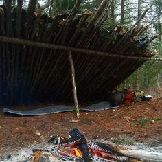 Quick shelter set up. Throwing down some boughs and I'm calling it home!  #Followthejourney #Onedirtylife #Explore #Nature #Canada #World #Backcountry #Outback #Wilderness #Callofthewild #Shelter #Bushcraft #Leanto #Camp #Woodsman #Survival #Freedom #Liveauthentic #Photooftheday #Travel #Adventure #Outdoors #Boreal #Wildernessculture #Liveofftheland #Primitiveliving #Selfreliance #Primitive by primitive_living