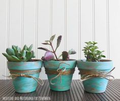 These DIY Rustic Succulent Pots are the perfect addition to any table inside or out, and a great way to welcome outside plants indoors during winter.