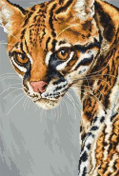 "New sealed embroidery cross-stitch kit ""Ocelot"" by Luca-S manufacture. Size of the picture: * ( cm ) The kit contains: - fabric Aida - cotton threads 26 colors - pattern - needle - stitching guide Cross Stitch Beginner, Mini Cross Stitch, Cross Stitch Animals, Modern Cross Stitch, Cross Stitch Kits, Cross Stitch Designs, Cross Stitch Patterns, Primitive Embroidery, Etsy Embroidery"
