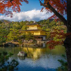 (金閣寺, Golden Pavilion) ;Kyoto