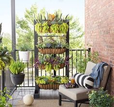 Elegant Balcony Garden Supplies