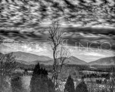 Fine Art Photography Black and White Photo HDR by PhotoLingo, $20.00 Landscape Photography, Virginia, Blue Ridge Mountains, Sky, Clouds, Nature Photo, Art, Wall Art, Wall Decor, Print