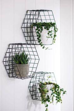 50 способов украсить растениями, даже если у Вас маленькая квартира