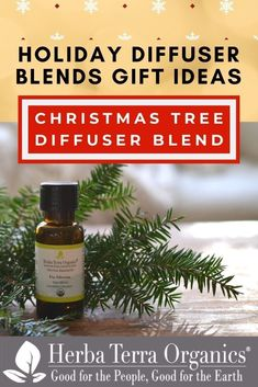 Herba Terra's Christmas Tree Diffuser Blend will make your home smell like a Christmas tree in the most amazing way possible and put you in the holiday spirit right away. You won't even feel the absence of the real tree- try it! This bundle includes Fir, Cedarwood, Gingergrass and Bay Laurel oils.Tap the image to see our 2020 gift guide Best Essential Oils, Essential Oil Diffuser, Essential Oil Blends, Home Spa Treatments, Mason Jar Projects, Aromatherapy Recipes, Holiday Essentials, House Smells, Diffuser Blends