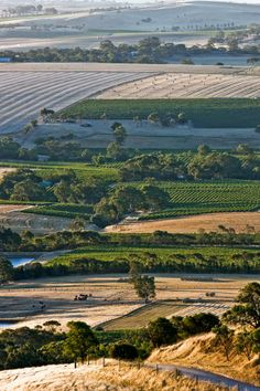 Beyond the vines in Australia's Barossa Valley