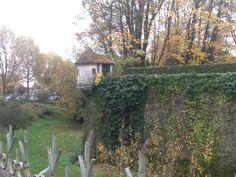 Autumn morning in Beaune