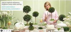 Martha Stewart for Macys