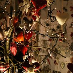 Prima domenica di dicembre. Sentite già l'aria di Natale?   #xmas #loveisanowl #sunday