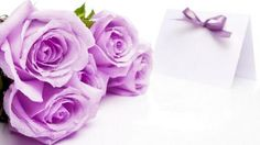 Best Anniversary Wishes, Quotes and Messages for Friends and Family 2 - Modernes Happy Mothers Day Wallpaper, Happy Mothers Day Images, Purple Roses Wallpaper, Rose Flower Wallpaper, Flower Backgrounds, Best Anniversary Wishes, Marriage Anniversary, Anniversary Pictures, 6th Anniversary