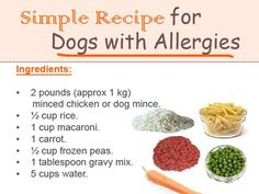 The Best Advice You Could Ever Get About Dog food - dog food recipes Food Dog, Make Dog Food, Best Dog Food, Best Homemade Dog Food, Homemade Dog Treats, Doggie Treats, Dog Treat Recipes, Dog Food Recipes, Healthy Recipes