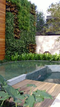Jardim de Alex Hanazaki faz sucesso na Mostra Black* - Living Design