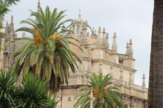 Spain, Sevilla, view on Cathedral