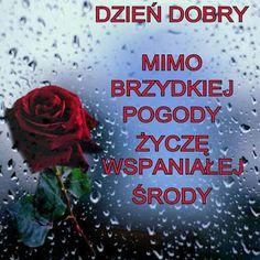 Gify i Obrazki: MILEJ ŚRODY Cover, Author, Wednesday, Pictures, Polish