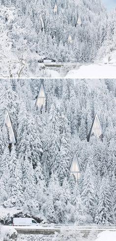 Primeval Symbiosis -Single Pole House