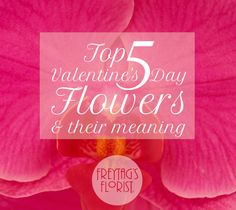 Top 5 Valentine's Day Flowers and Their Meaning