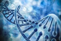 A new study finds that RNA, considered the DNA template for protein translation, often appears with an extra letter -- and this letter is the regulatory key for control of gene expression. The discovery offers insight into different RNA functions in cellular processes and contributions to the development of disease.