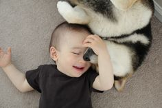 I'm obsessed with this little boy and his Shiba