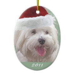 Maltese Christmas Ornaments. Maltese DogsSanta HatChristmas ... 6abd784fc