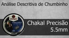 Analise Descritiva - Chumbo Chakal Precisão 5.5mm tiro ao alvo caça
