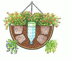 Self watering basket