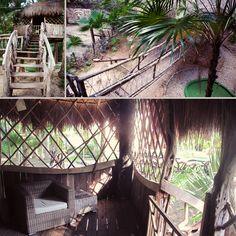 Sandos Playacar Treehouse  @Sandos Playacar Beach Experience Resort  http://christinehopaluk.com/blog/2014/04/07/first-family-vacation-to-sandos-playacar-part-2/
