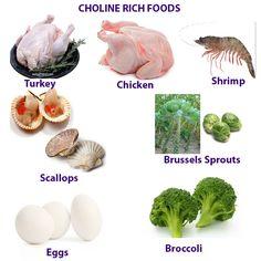High choline foods