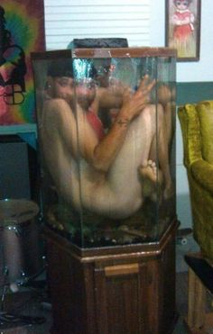 Squished in My Fish Tank - Swimming Pool Fail ---- hilarious jokes funny pictures walmart fails meme humor Super Funny Memes, Funny Jokes, Funny Pick, Sea Monkeys, Are You Serious, The Shape Of Water, How To Start Conversations, Aquarium Fish Tank, Fish Tanks