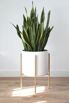 Office Plants Gold Planter, Metal Planters, Modern Planters, White Planters, Modern Plant Stand, Metal Plant Stand, Plant Stands, House Plants Decor, Plant Decor