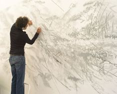 Julie Mehretu, Artist