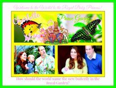#RoyaBaby Name: RT4 #Charlotte Fav4 #Alice #PrincessKate #PrinceWilliam Welcomed #baby #girl! #FM #MeatlessMonday