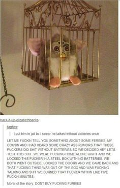 Lol this is so funny, Furbies at creepy as shit. Tumblr Stuff, Funny Tumblr Posts, My Tumblr, Creepy Stories, Funny Stories, Just For Laughs, In This World, Just In Case, The Funny