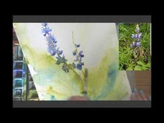 Watercolor Lesson: Painting Lupines with a Wet in Wet Background by Angela Fehr - YouTube