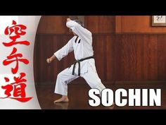 Choosing The Best Martial Arts Style – Martial Arts Techniques Best Martial Arts, Martial Arts Styles, Martial Arts Techniques, Martial Arts Workout, Boxing Workout, Jka Karate, Shotokan Karate Kata, Goju Ryu, Muscular